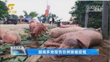 越南多地报告非洲猪瘟疫情