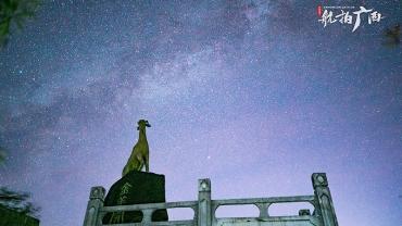观星好去处!贺州大桂山森林公园夜空璀璨